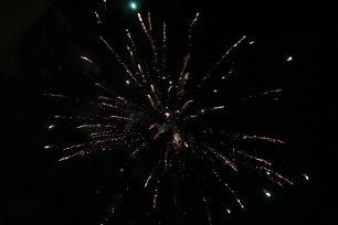 Nieuwjaarsduik-3047