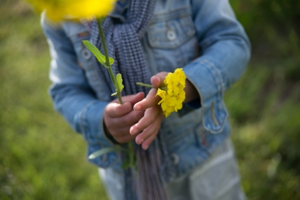 bloemenzee-0536